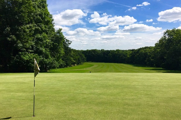 Golf Clubs in Harrow