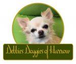 Debbies Doggies of Harrow